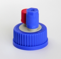 Functional bottle two-port screw cap